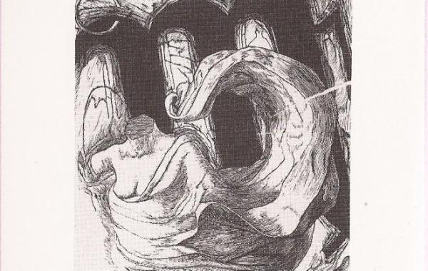 1992 Peter BOSTEELS, DIERENRIEM 2