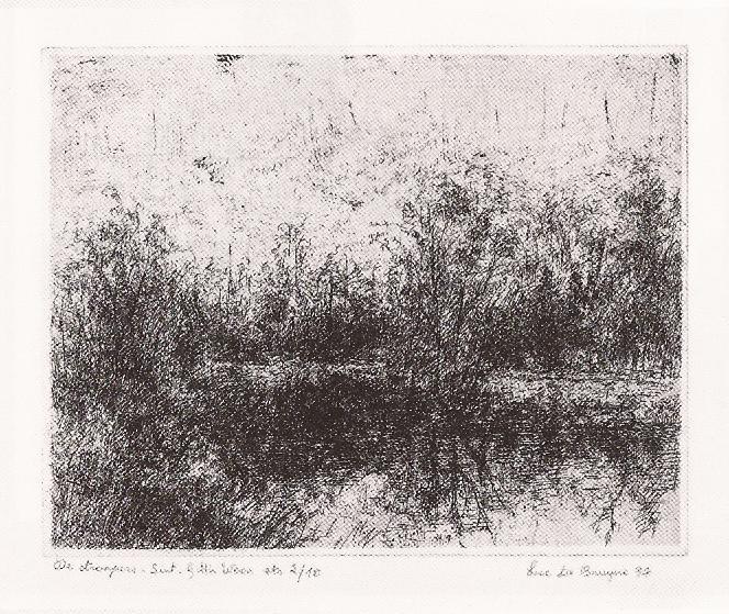 2000 Luc DE BRUYNE, LANDSCHAPPEN 2