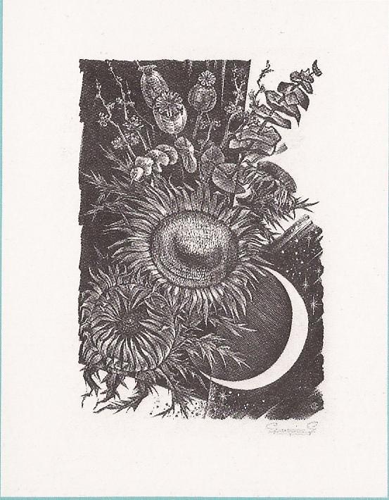 1985 Gerard GAUDAEN-VOORRAAD UITGEPUT